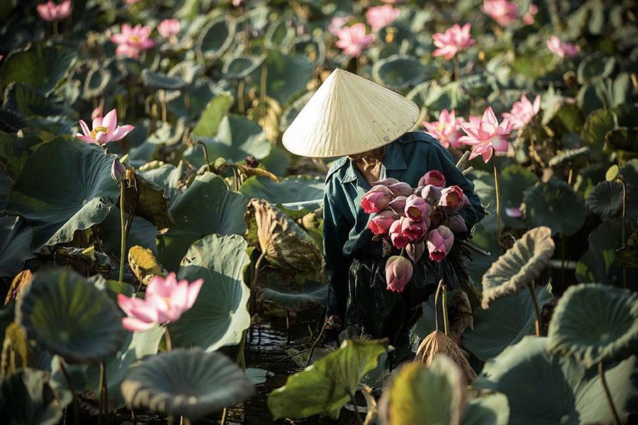 hoi an lifestyle photograph vietnam rehahn